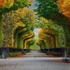 schönbrunn-palace-gardens-in-vienna-austria-20161023